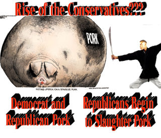 RiseOfTheConservatives