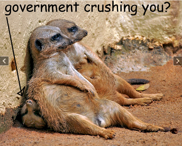 Government_Crushing_You