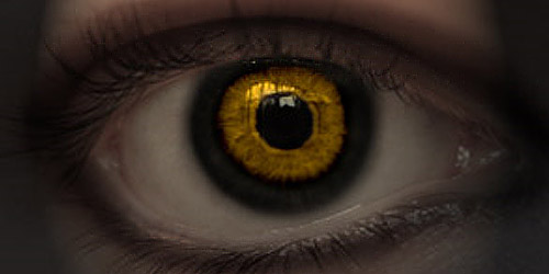 Scarry Devils Eye pshorror5