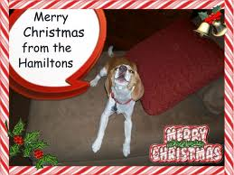 MerryChristmasfromthe Hamiltons